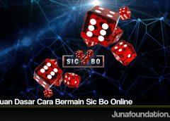Panduan Dasar Cara Bermain Sic Bo Online